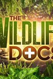 The Wildlife Docs Elephants Fancy Footwork (2013– ) Online HD